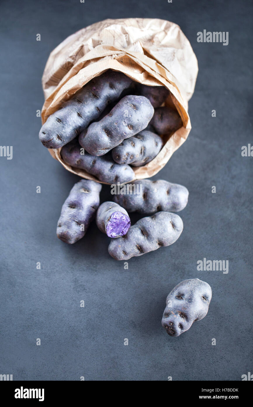 Vitelotte, chiamato anche Vitelotte noire, Négresse o truffe de Chine, è un gourmet francese varietà di blu-viola Foto Stock