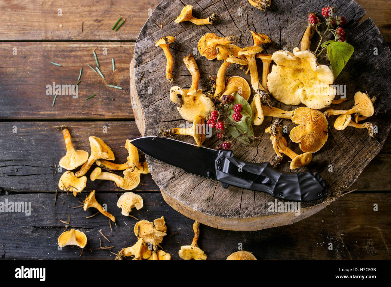 Forest finferli con lamponi selvatici e turist coltello sul moncone di legno sopra il vecchio sfondo di legno. Vista Immagini Stock