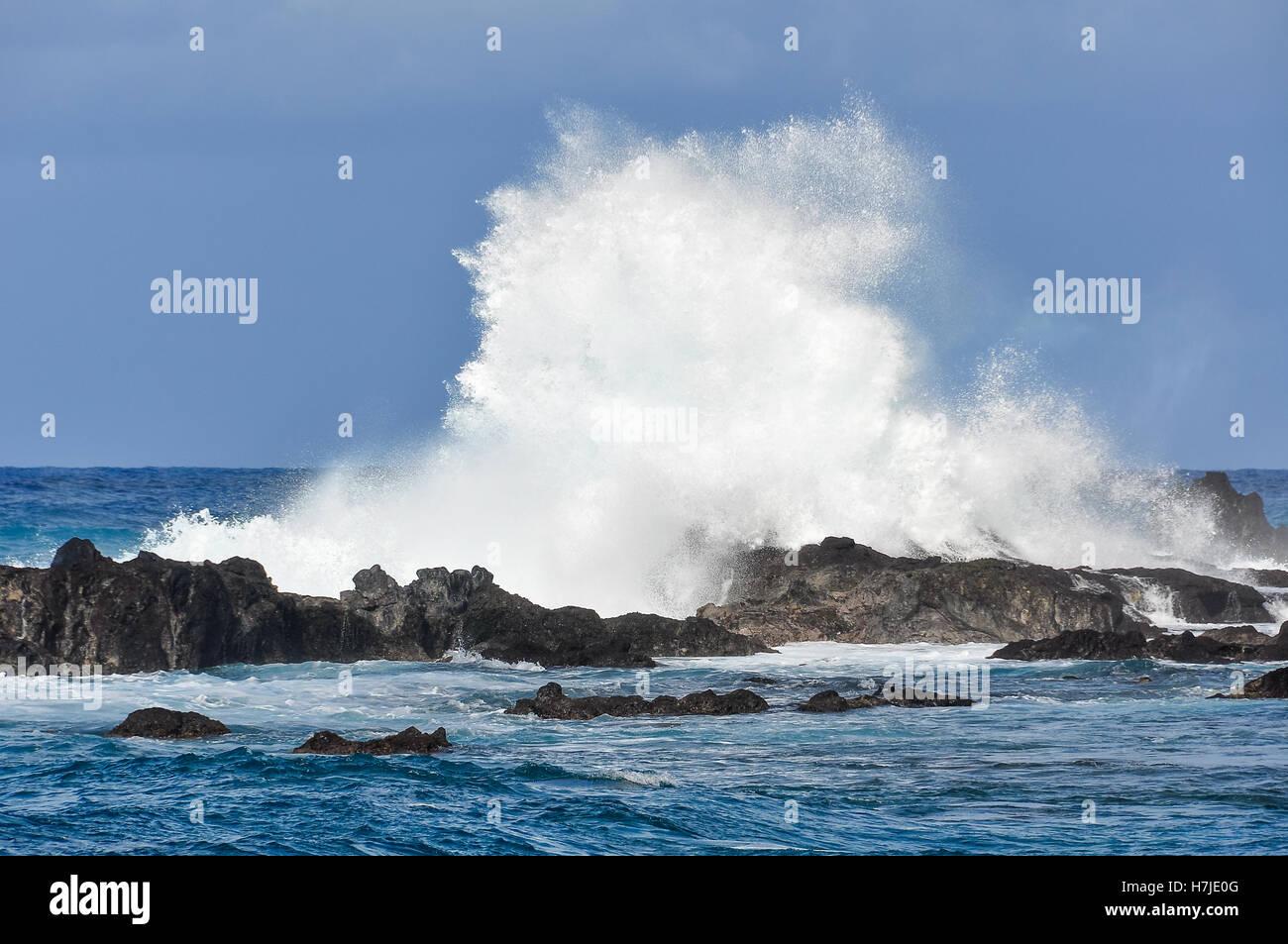 Grandi onde nel ruvido paesaggio costiero nell isola di pasqua, Cile Immagini Stock