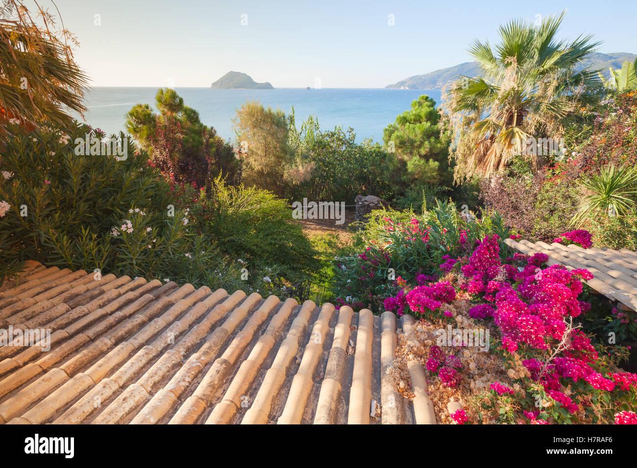 Paesaggio estivo dell isola di zante grecia piastrelle vecchie