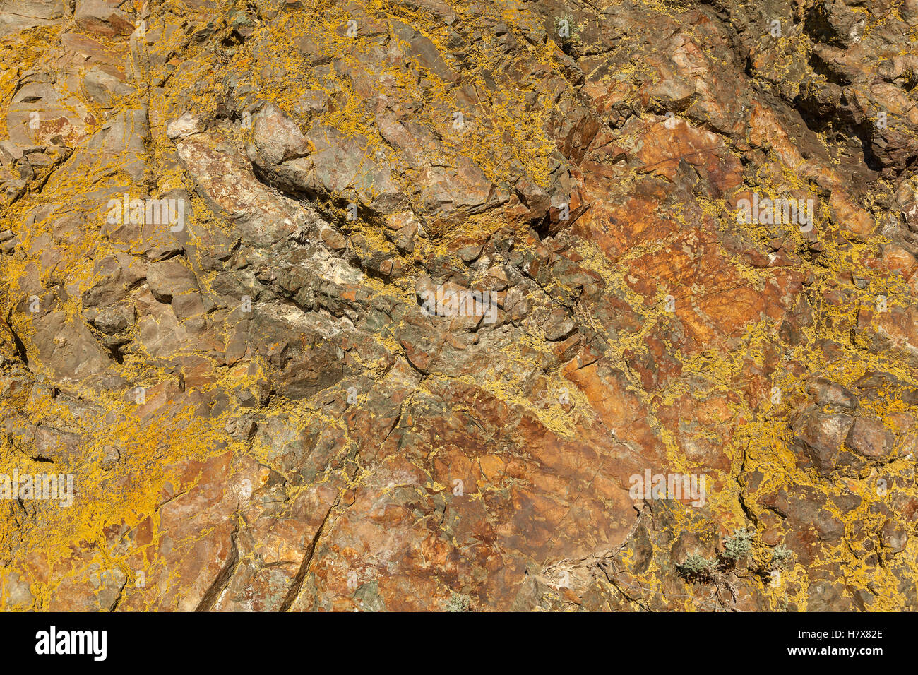 Superficie di marmo.Close-up di marmo naturale scultura in pietra texture. Foto Stock