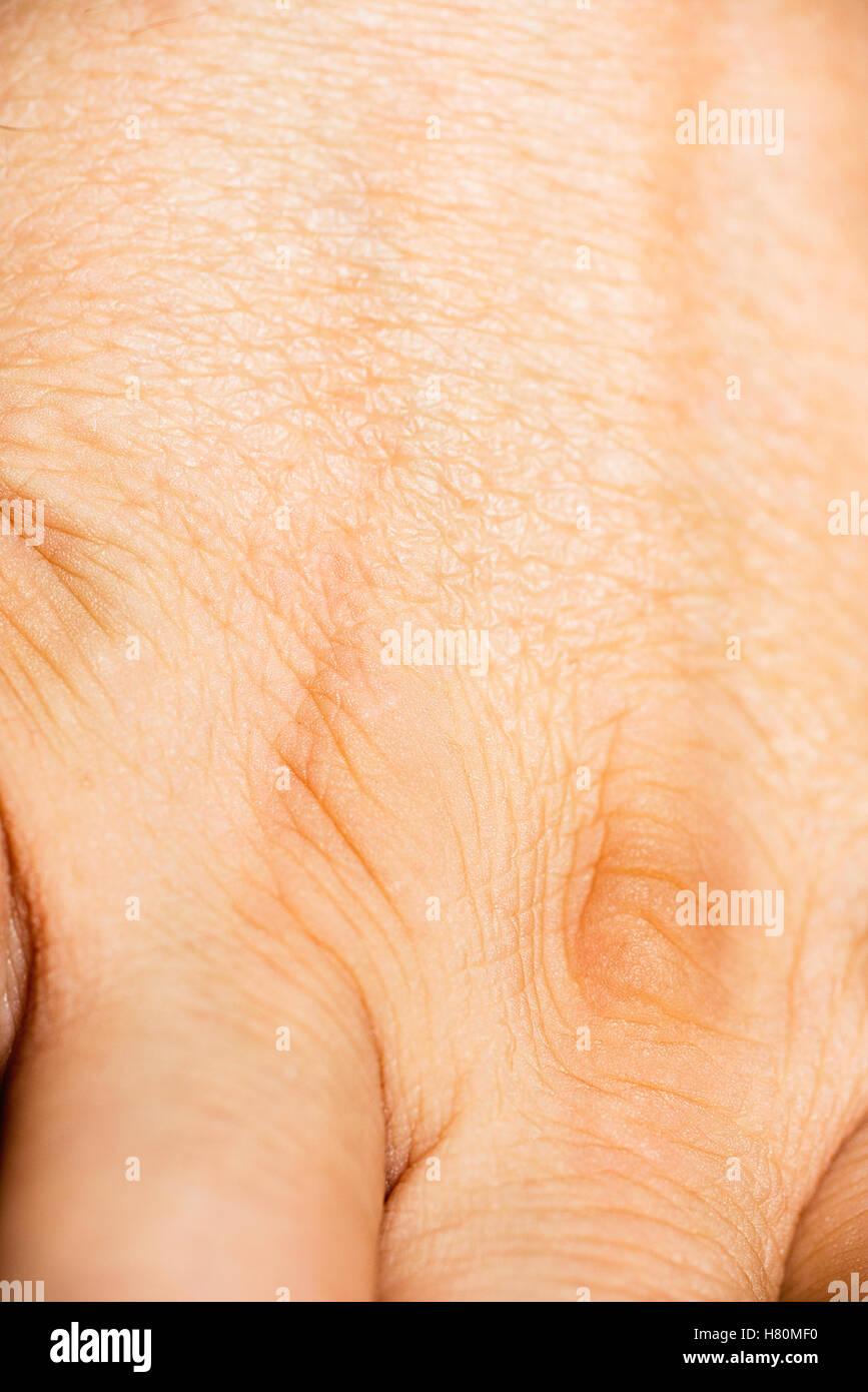 La pelle del dorso di una mano di un uomo Immagini Stock
