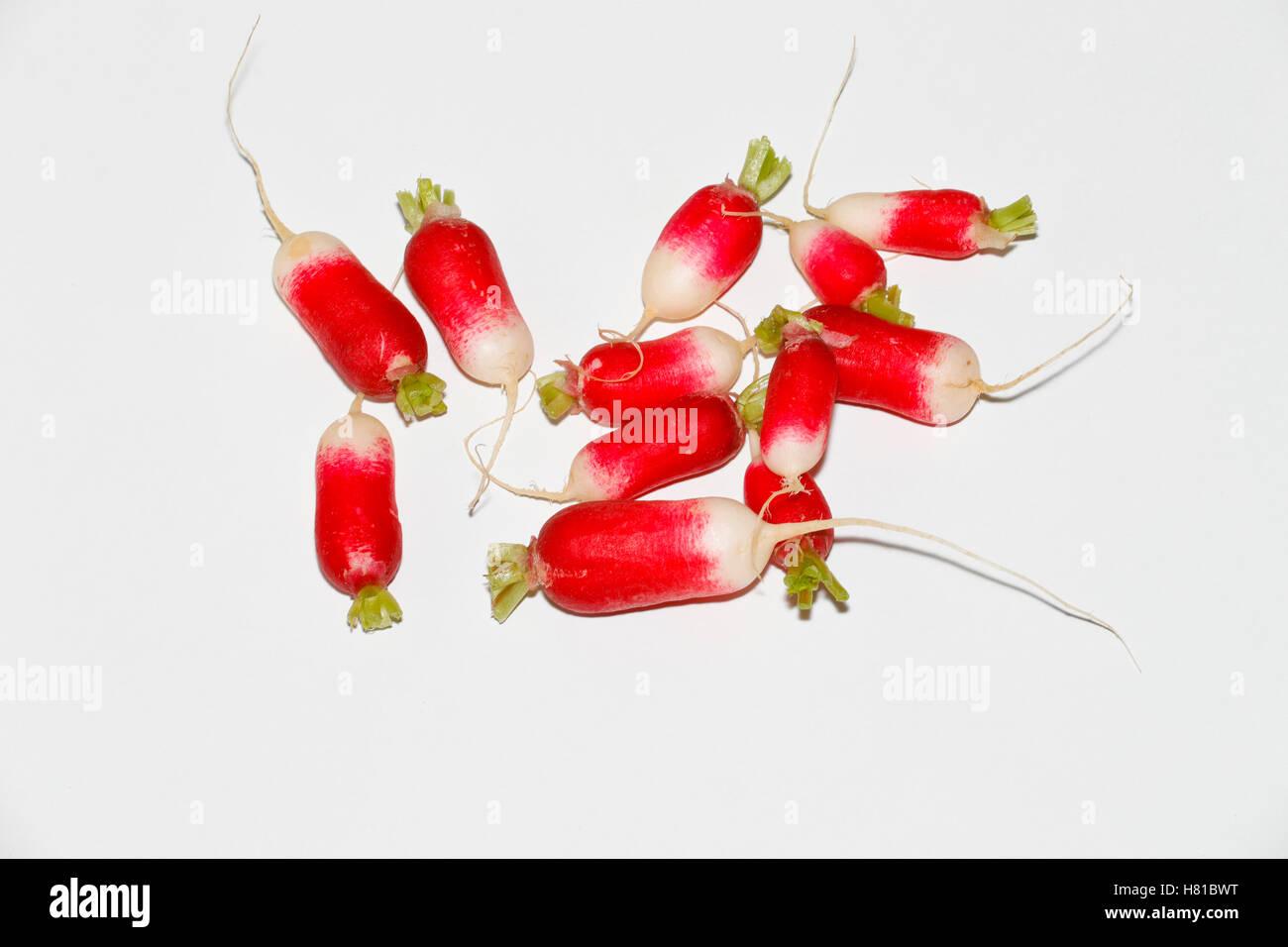 Ravanelli su sfondo bianco. Tagliare Immagini Stock