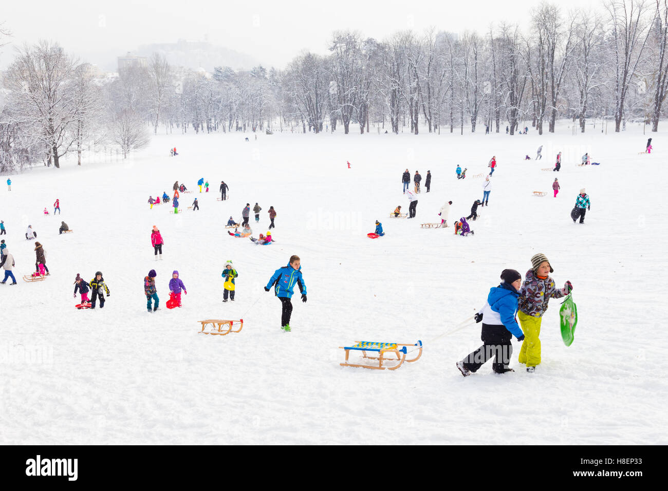 Divertimento invernale, neve, famiglia slittino in inverno. Immagini Stock