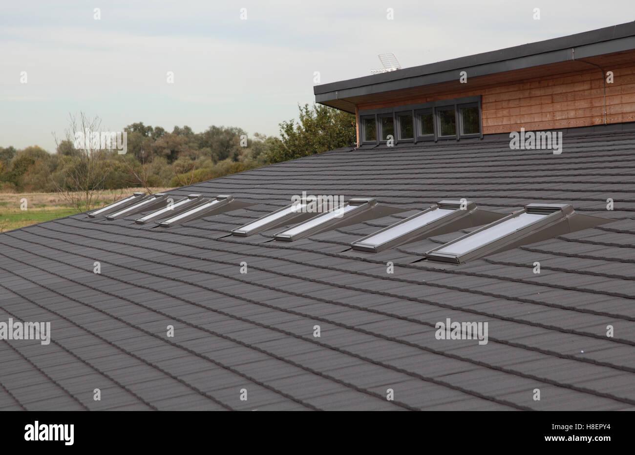 Dettaglio del tetto di una nuova classe di legno blocco ad una