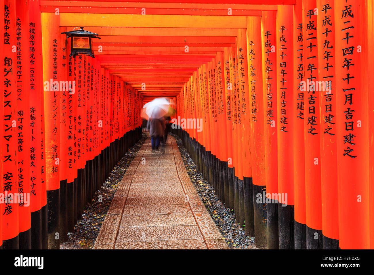 Kyoto, Giappone. I cancelli in Fushimi Inari santuario. Immagini Stock