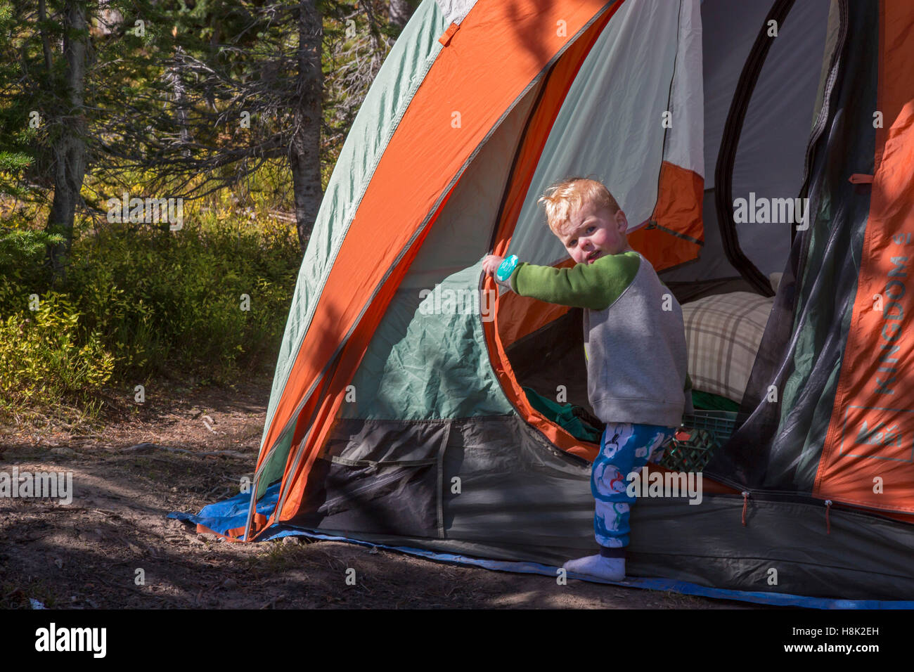 Tabernash, Colorado - due-anno-vecchio Adamo Hjermstad Jr. esce fuori di una tenda in campeggio con la famiglia Immagini Stock