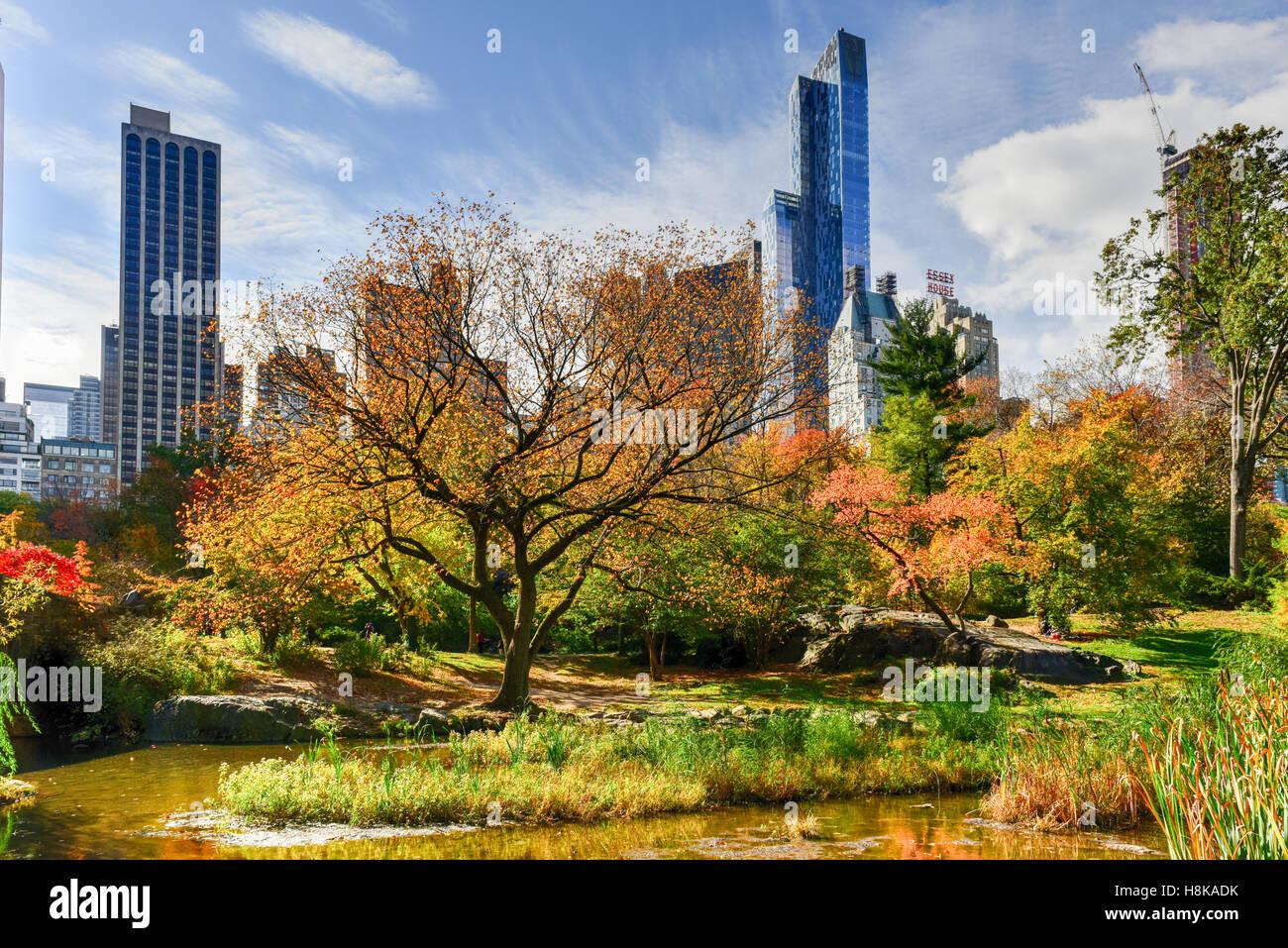 Vista di Central Park a sud della città di New York in autunno. Immagini Stock