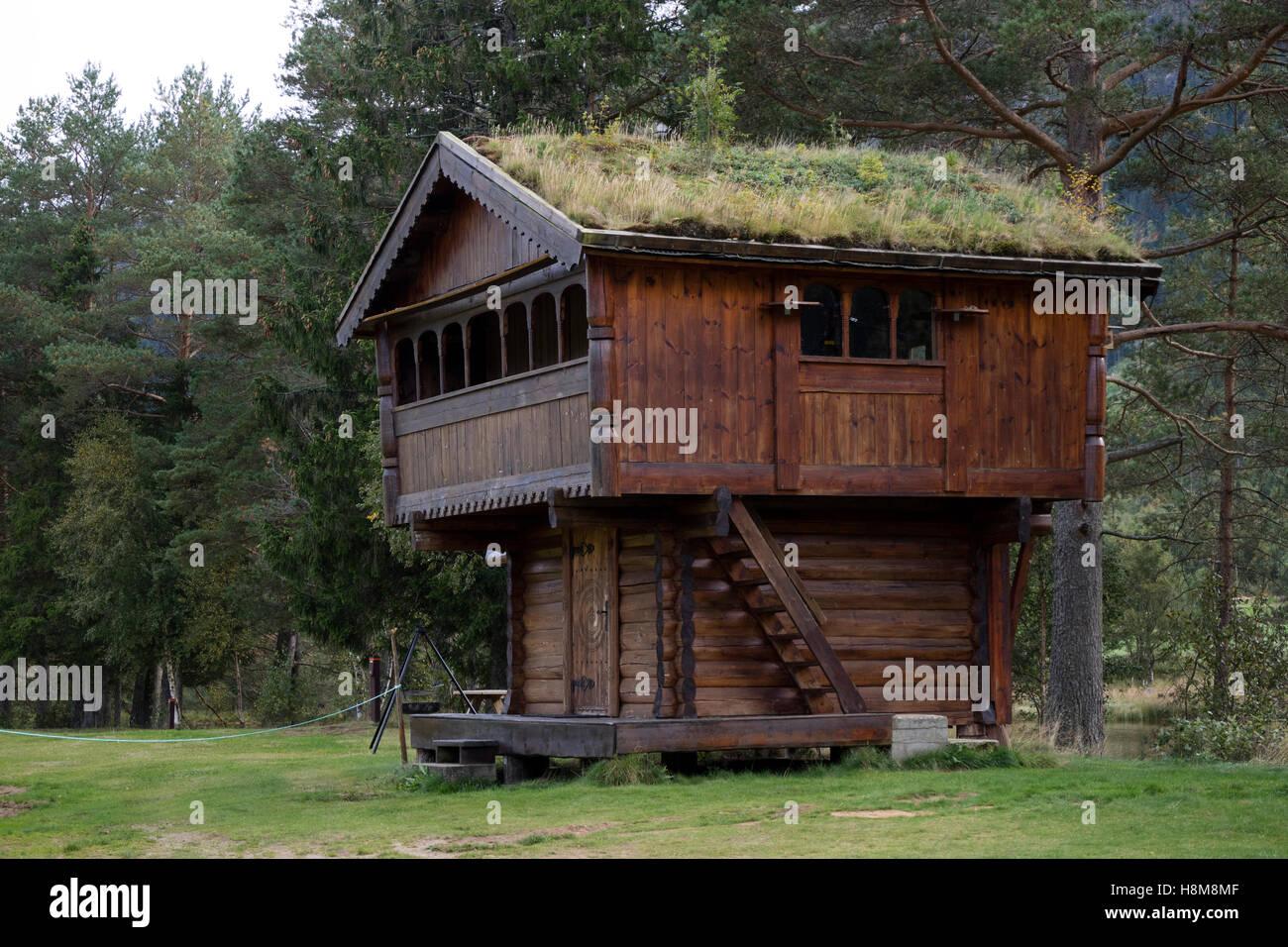 Erba-tettoie, vecchio deposito di cibo casa a valle nel Setesdal, Norvegia Immagini Stock