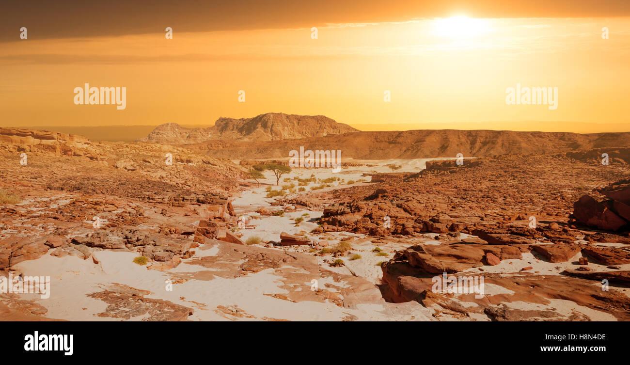 Il Sinai il paesaggio del deserto Immagini Stock
