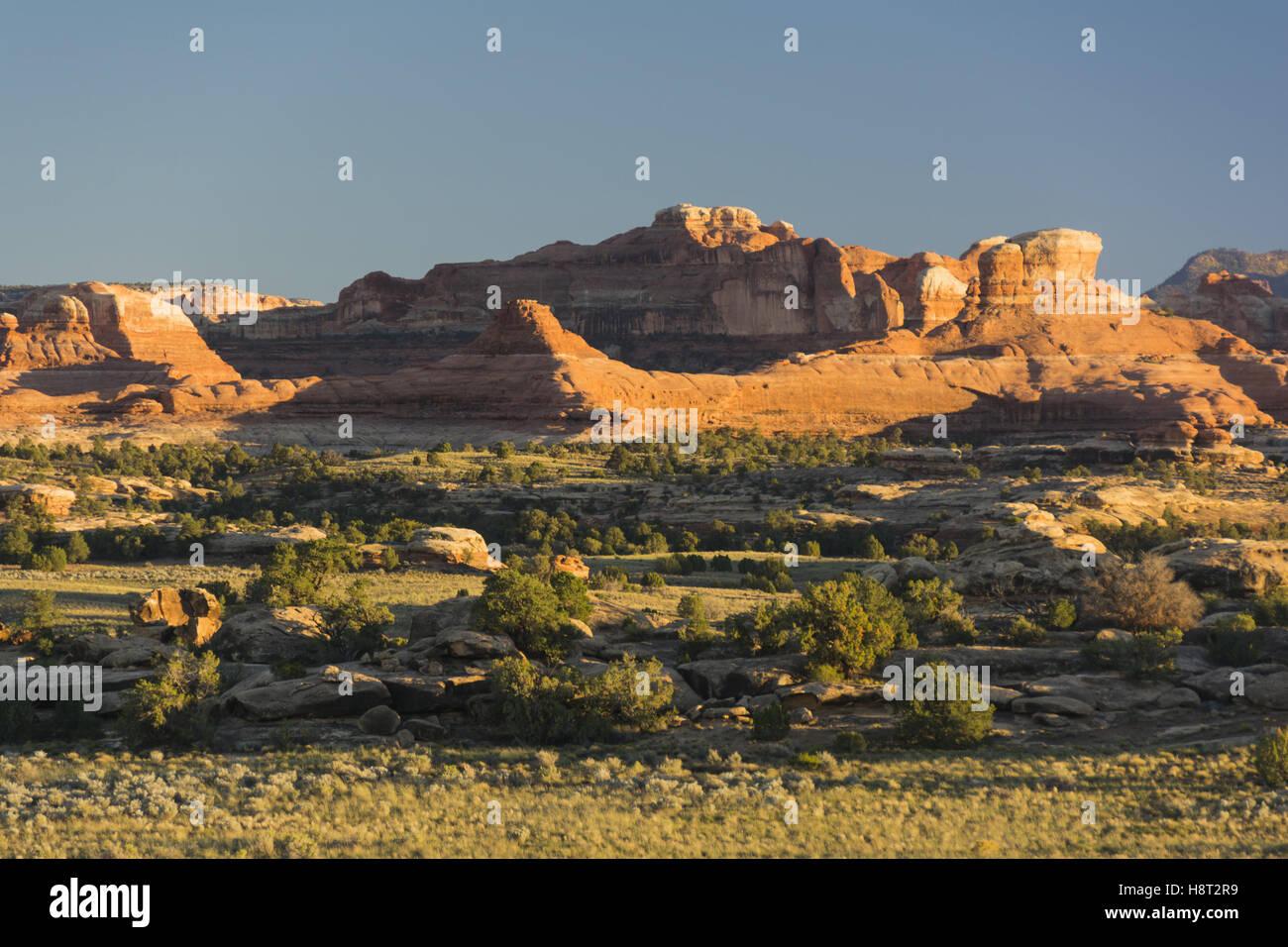 Utah, il Parco Nazionale di Canyonlands, aghi distretto, Squaw Flat paesaggio area Immagini Stock