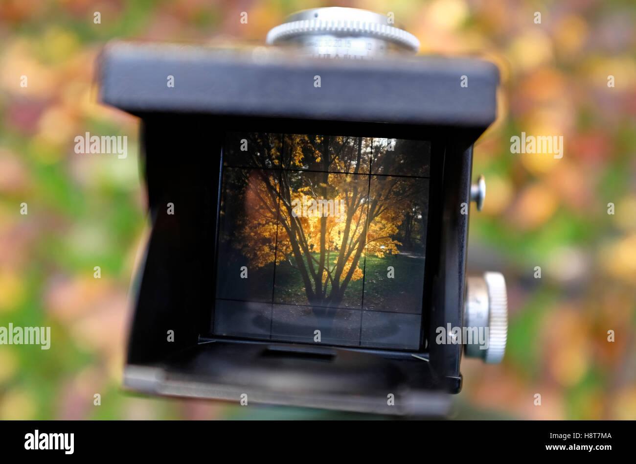Vista attraverso il mirino di una twin reflex Immagini Stock
