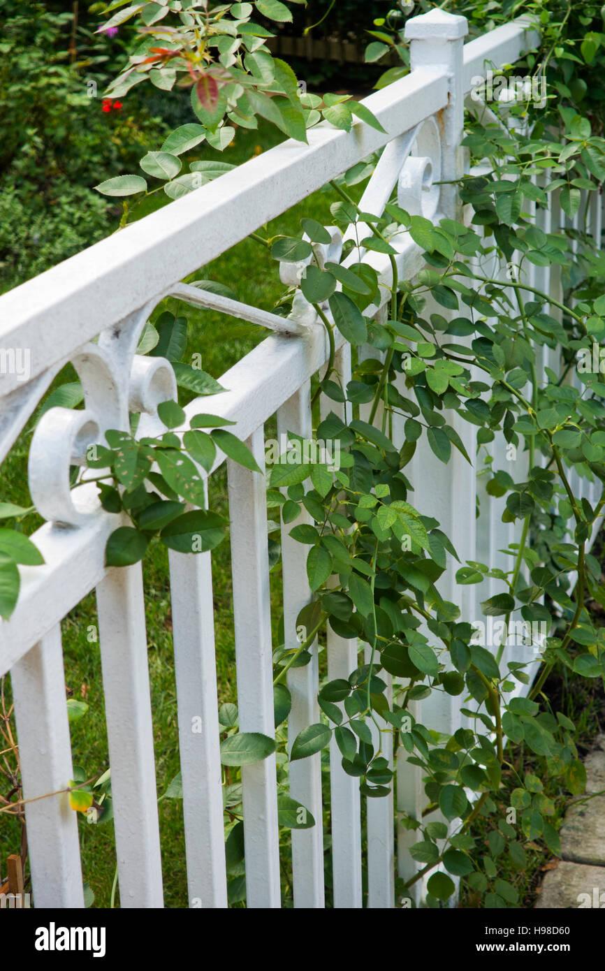 Recinzione Giardino In Ferro bianco in ferro battuto di recinzione da giardino foto stock