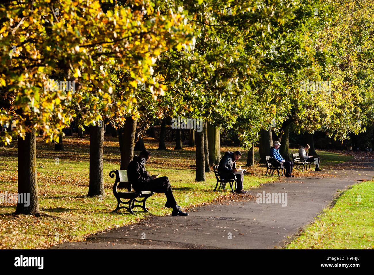 Seduta tranquillamente sulle panchine di Regents Park a Londra per una giornata autunnale Immagini Stock