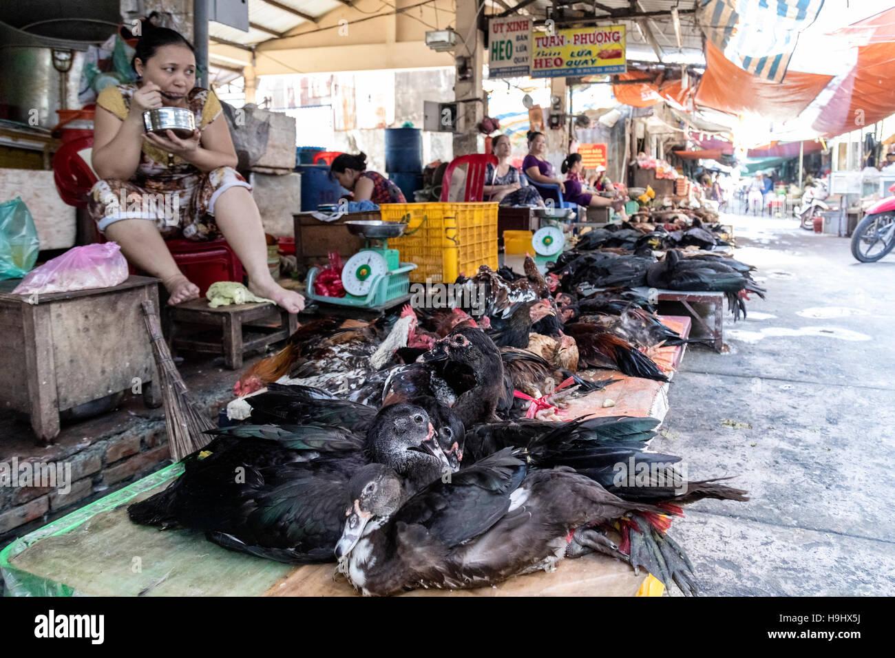 Vivi le anatre per la vendita su un mercato locale a Vinh Long; Delta del Mekong, Vietnam; Immagini Stock