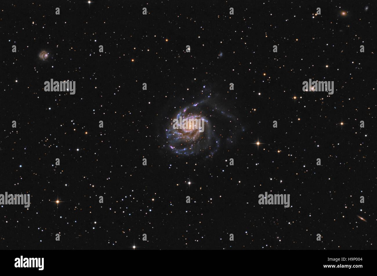 La girandola Galaxy (M101) nella costellazione dell'Orsa Maggiore Foto Stock