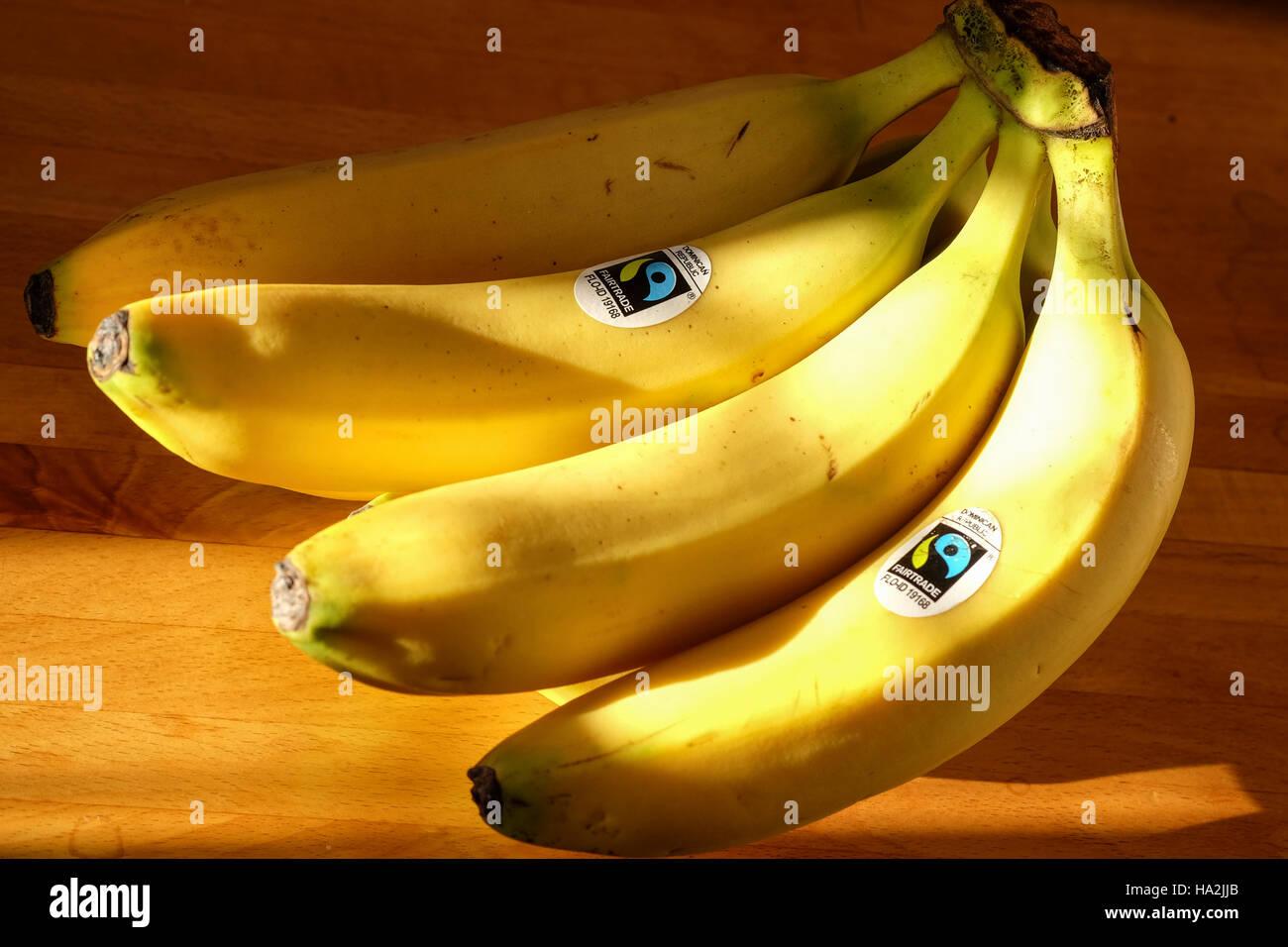 Grappolo di banane con il commercio equo e solidale etichetta adesiva Immagini Stock