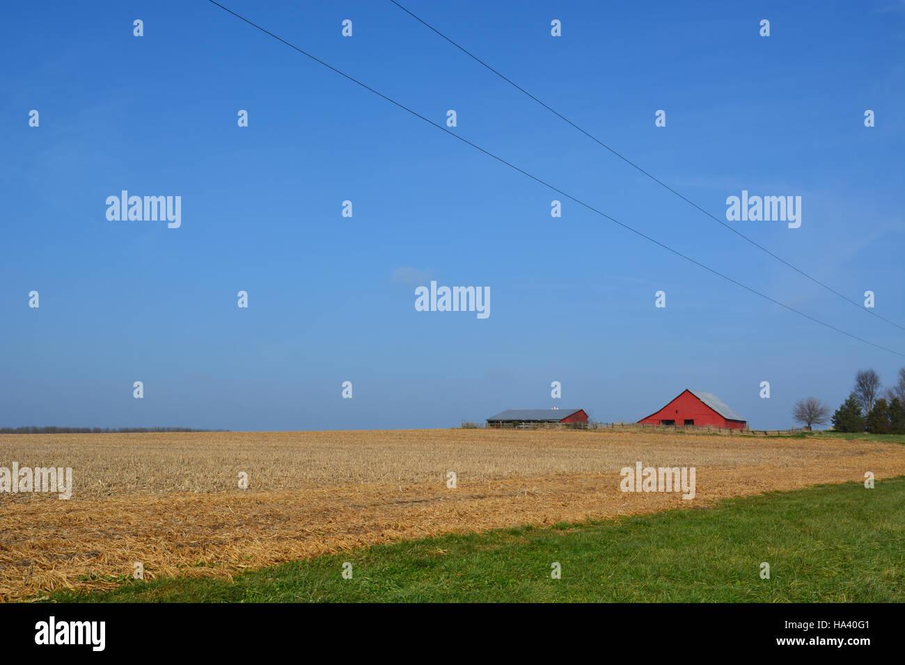 Campi di fattoria nel midwestern Stati sono raccolte in anticipo di inverno. Immagini Stock