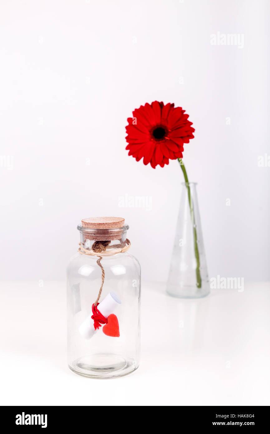 Amore un messaggio in bottiglia. Rotolo di carta bianca con filo rosso e rosso gerbera fiore su uno sfondo bianco. San Valentino concetto Foto Stock
