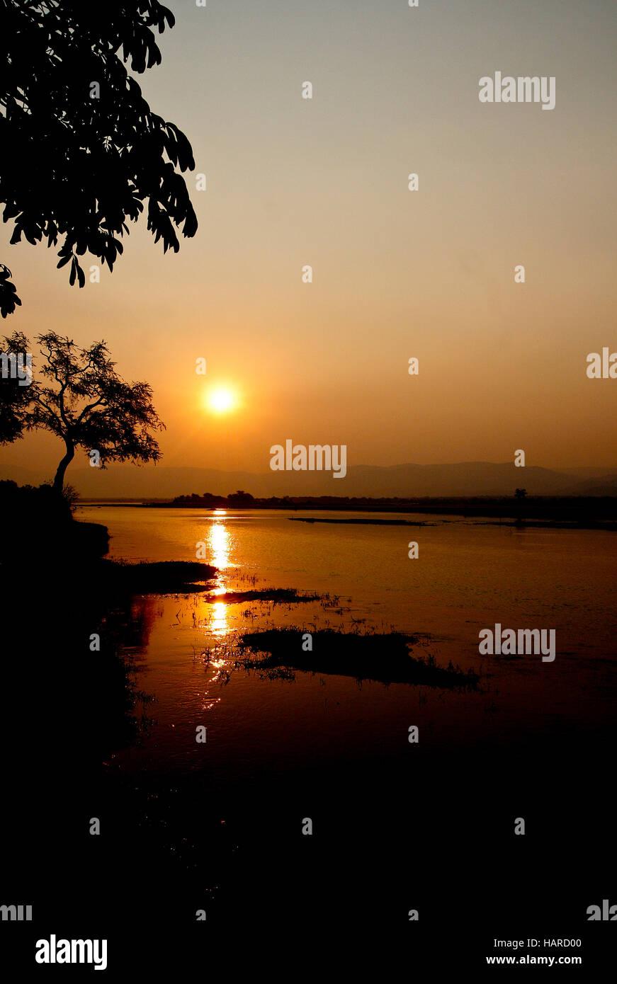 Fiume Zambesi. Parco Nazionale di Mana Pools. Zimbabwe Immagini Stock