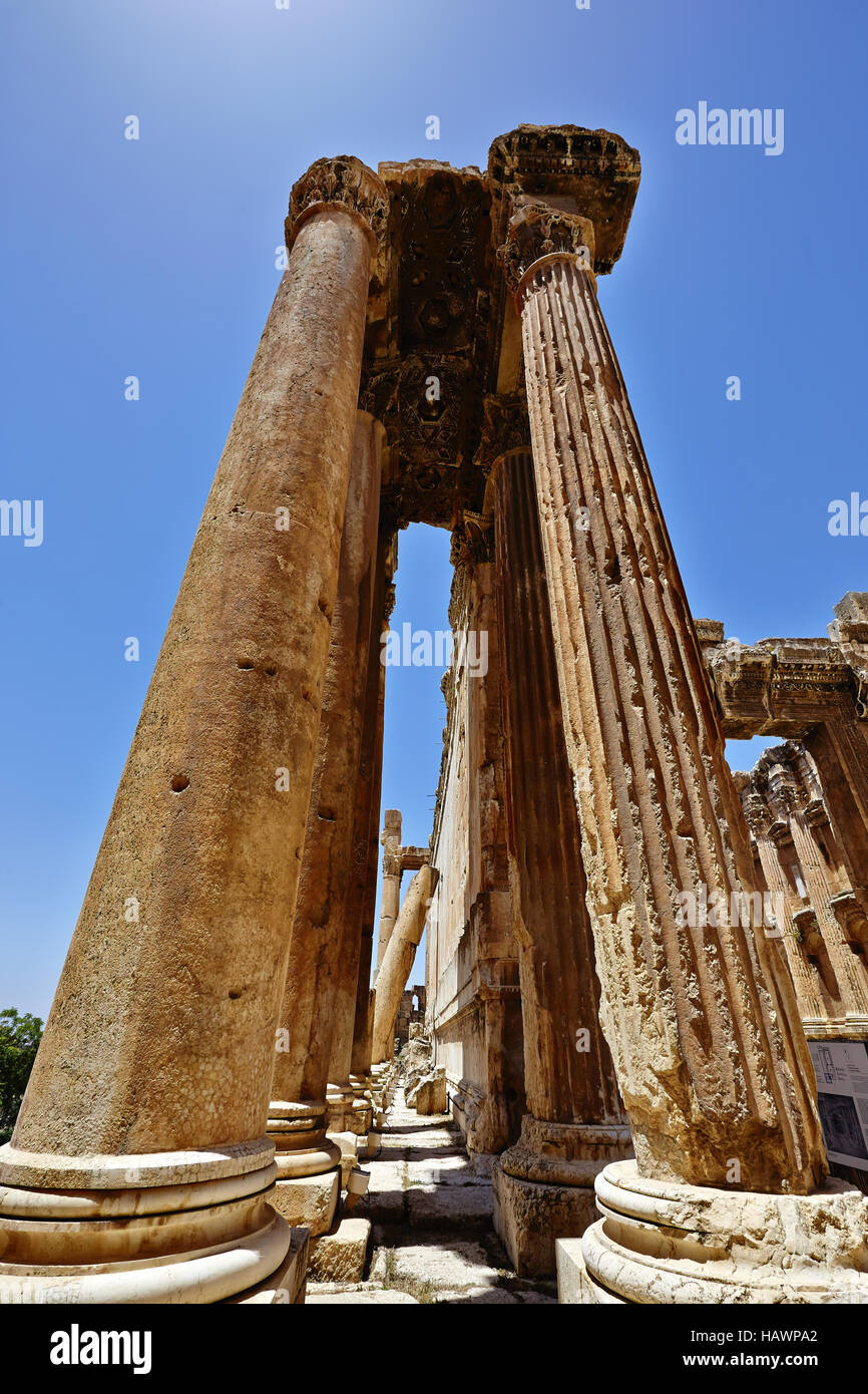 Tempio di Bacco - Baalbek, Libano Immagini Stock