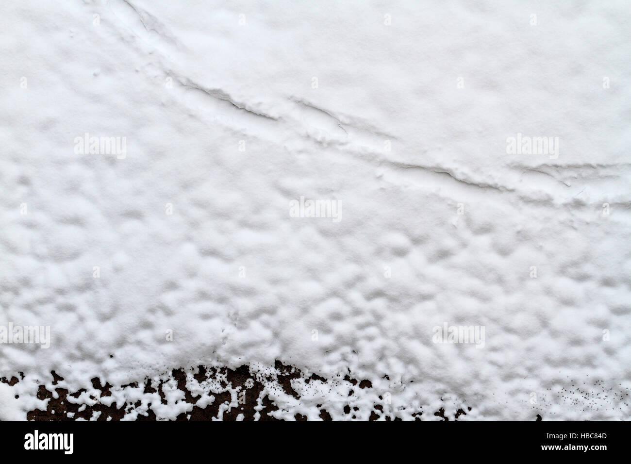 Impronte Sulla Neve Bianco E Nero Terra Foto Immagine Stock