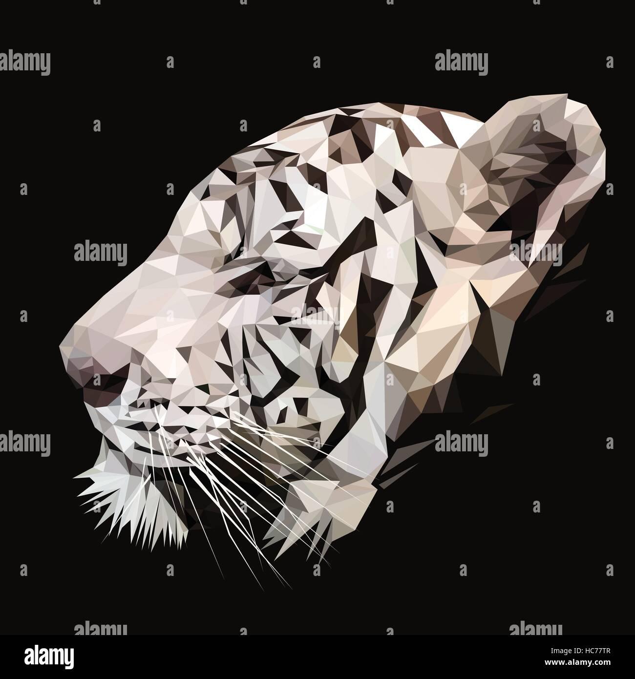 La tigre bianca bassa poli design. triangolo illustrazione