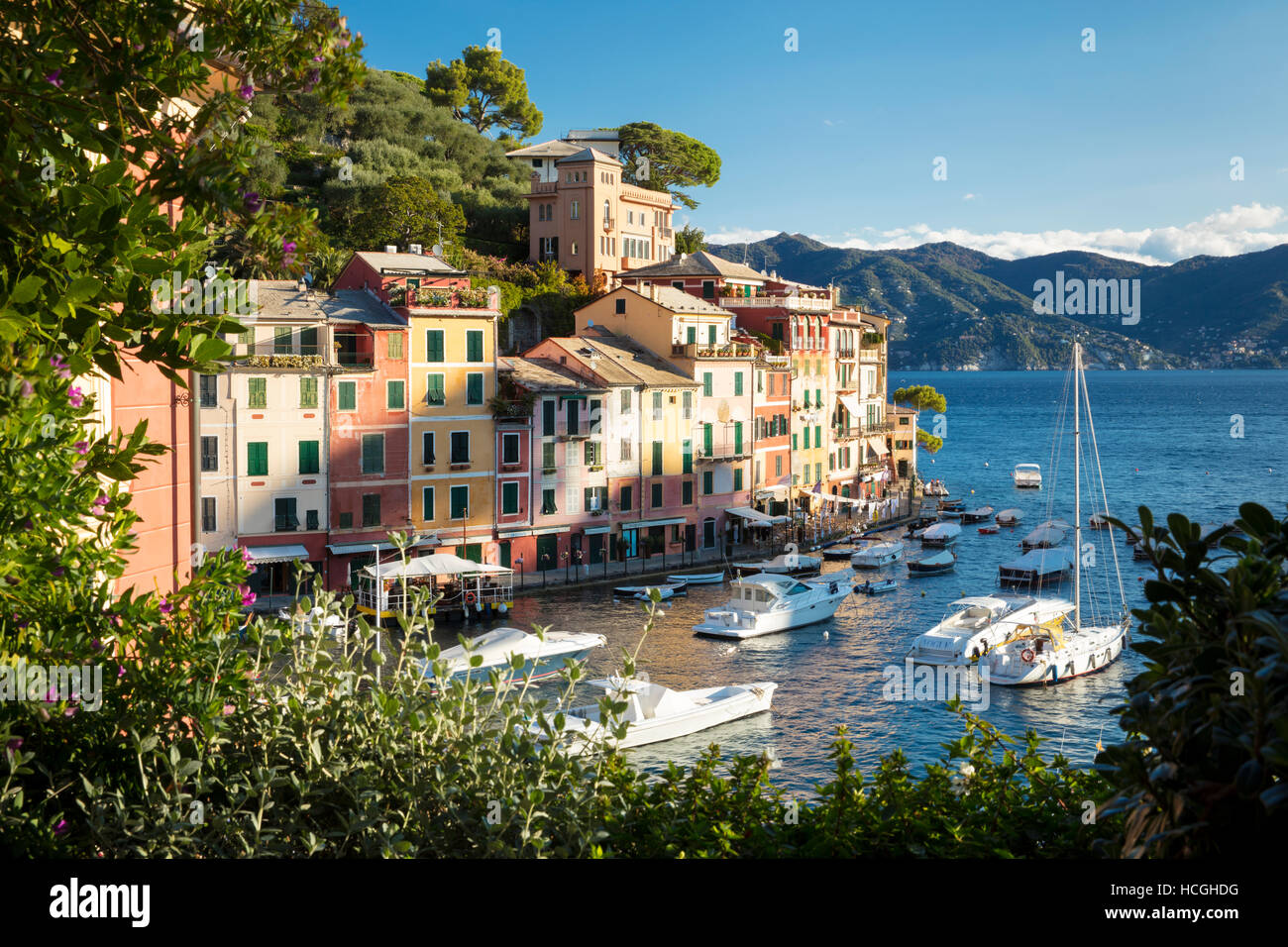 La mattina presto vista sulla cittadina portuale di Portofino, Liguria, Italia Immagini Stock
