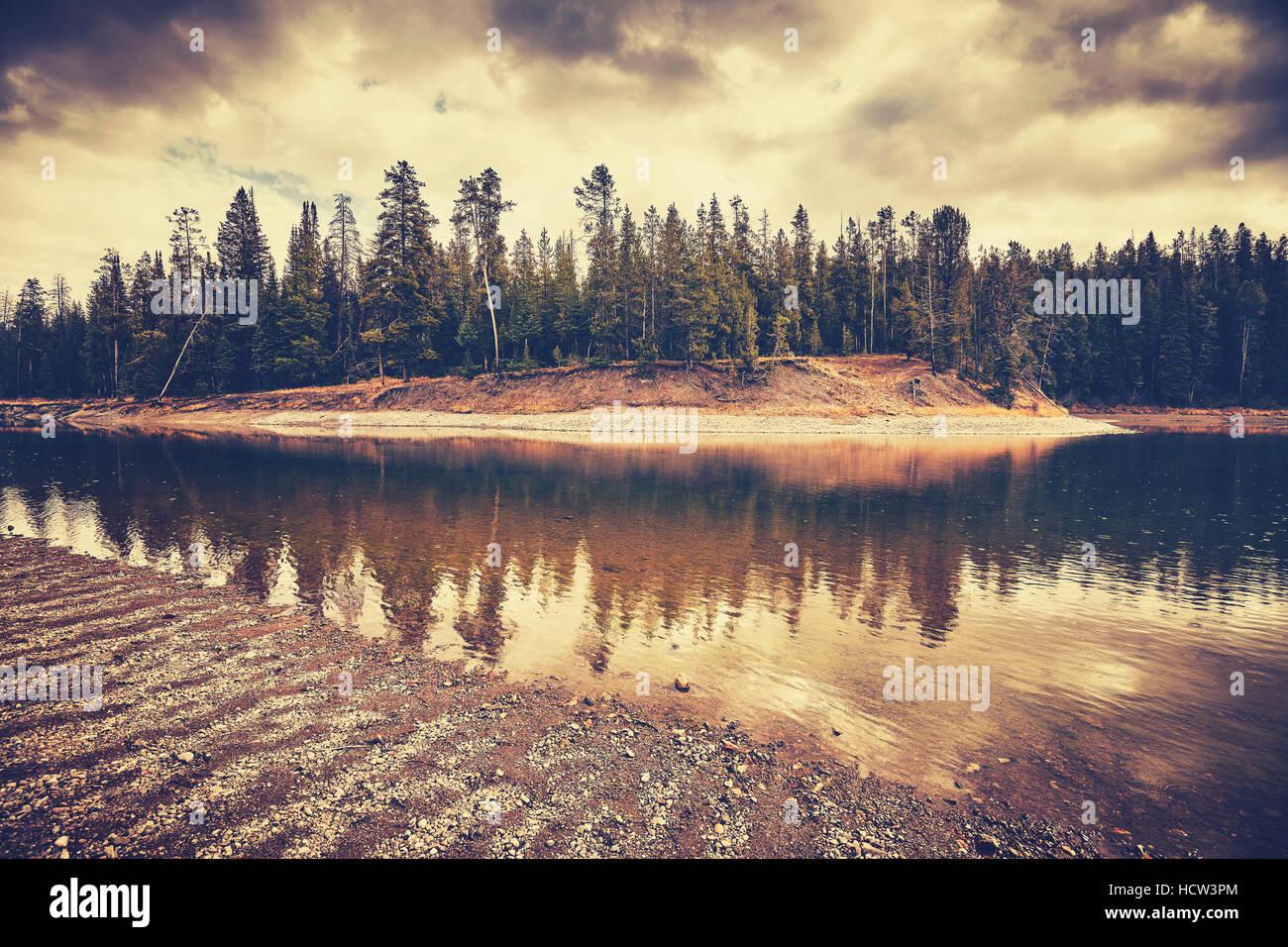 Vintage nei toni del paesaggio misterioso sul giorno di pioggia nel Parco Nazionale di Grand Teton, Wyoming negli Immagini Stock
