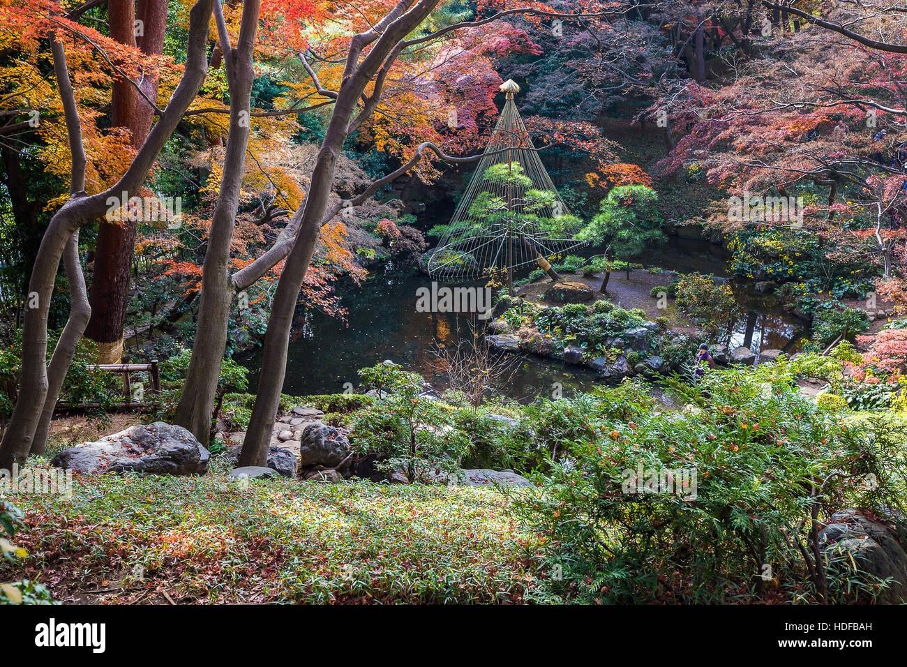 Tonogayato Garden è un giardino paesaggistico in Kokubunji, Tokyo costruito per un magnate ma è ora di Immagini Stock