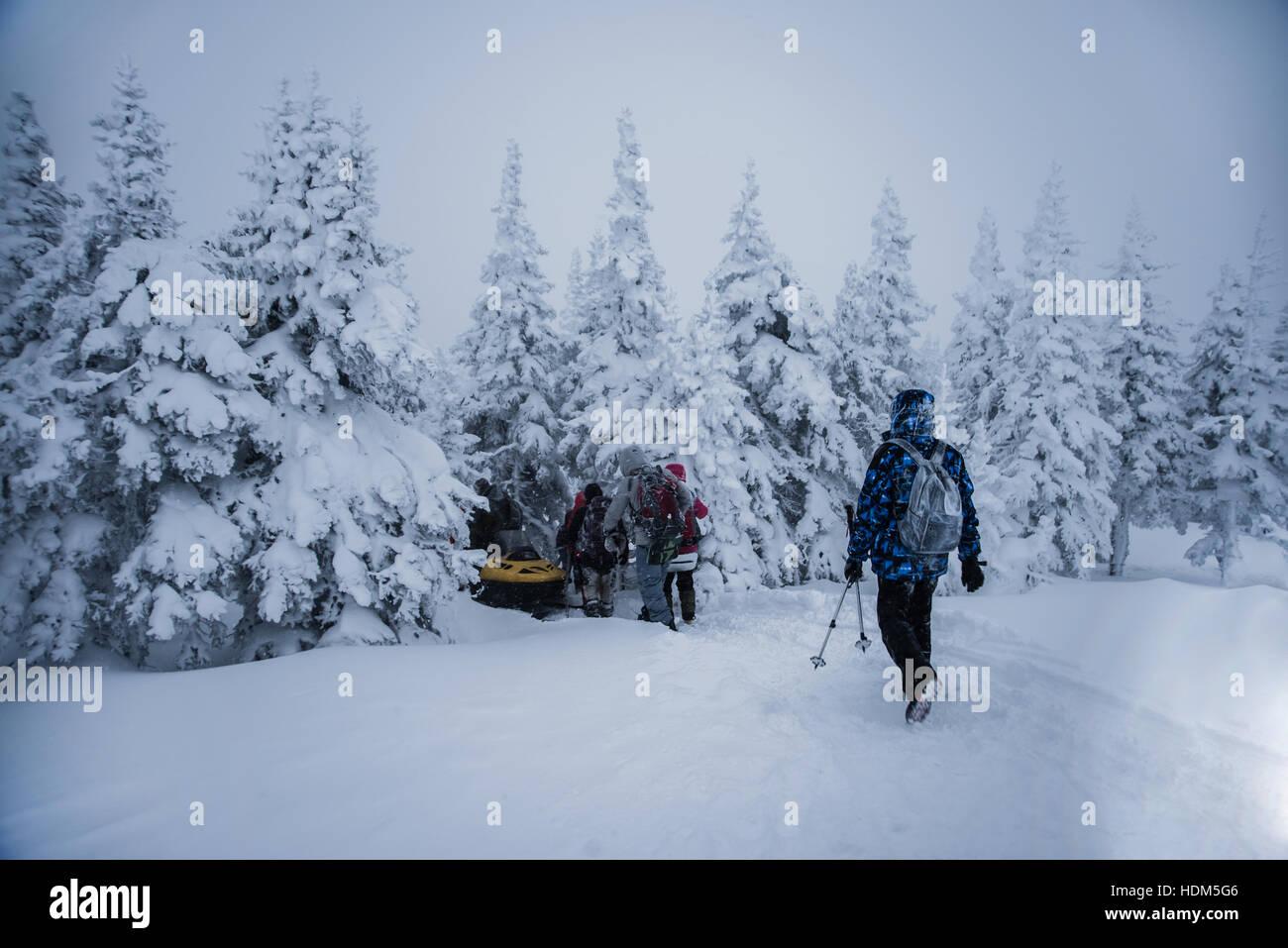 I giovani con le racchette da neve. Motoslitta accelerando in boschi innevati alberi. posteriore vista posteriore. Immagini Stock