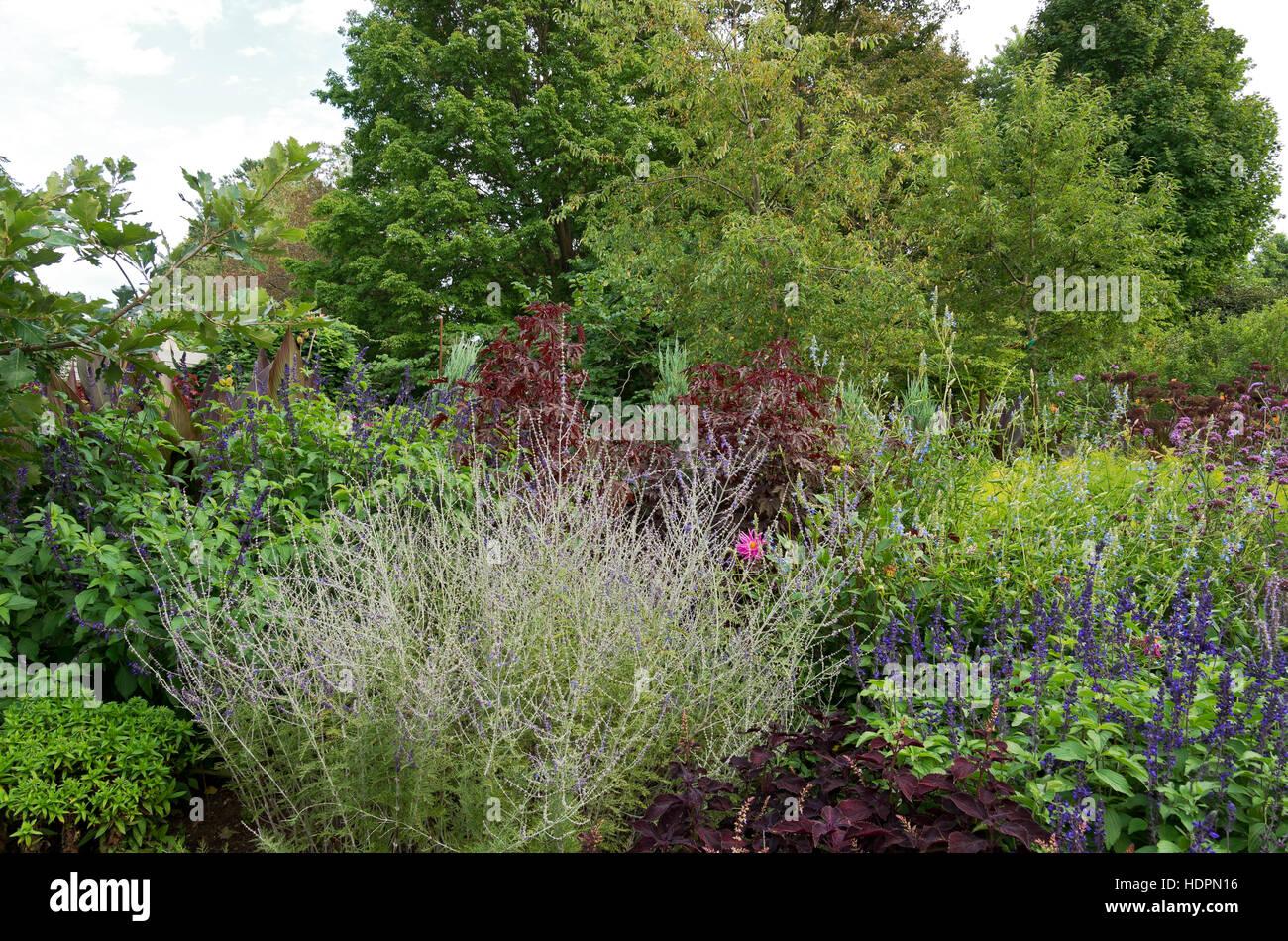 Arbusti Decorativi Da Giardino : Giardino di arbusti ornamentali e piante fiorite delimitata da