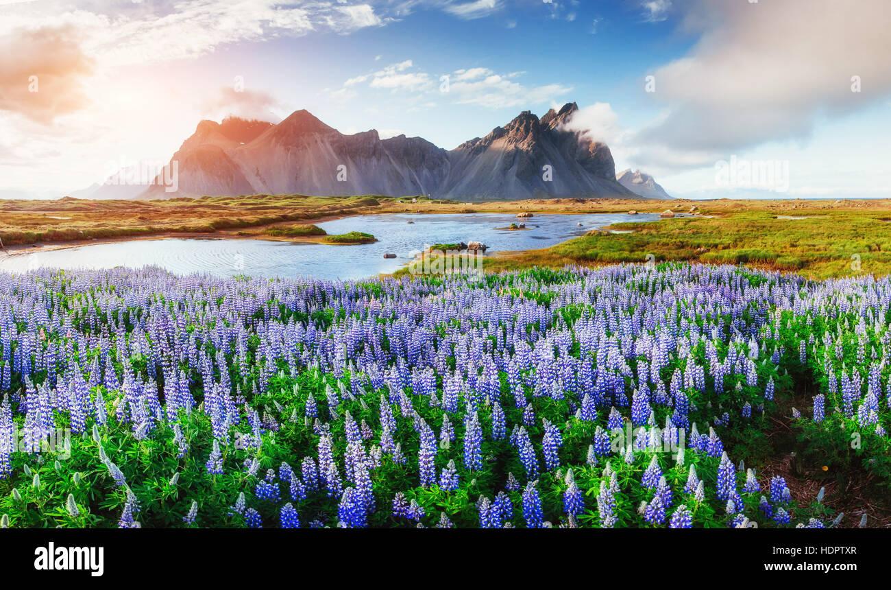Pittoresche vedute del fiume e le montagne in Islanda. Immagini Stock