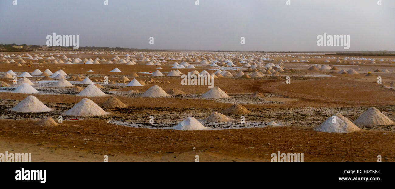 I campi di sale, Senegal Immagini Stock