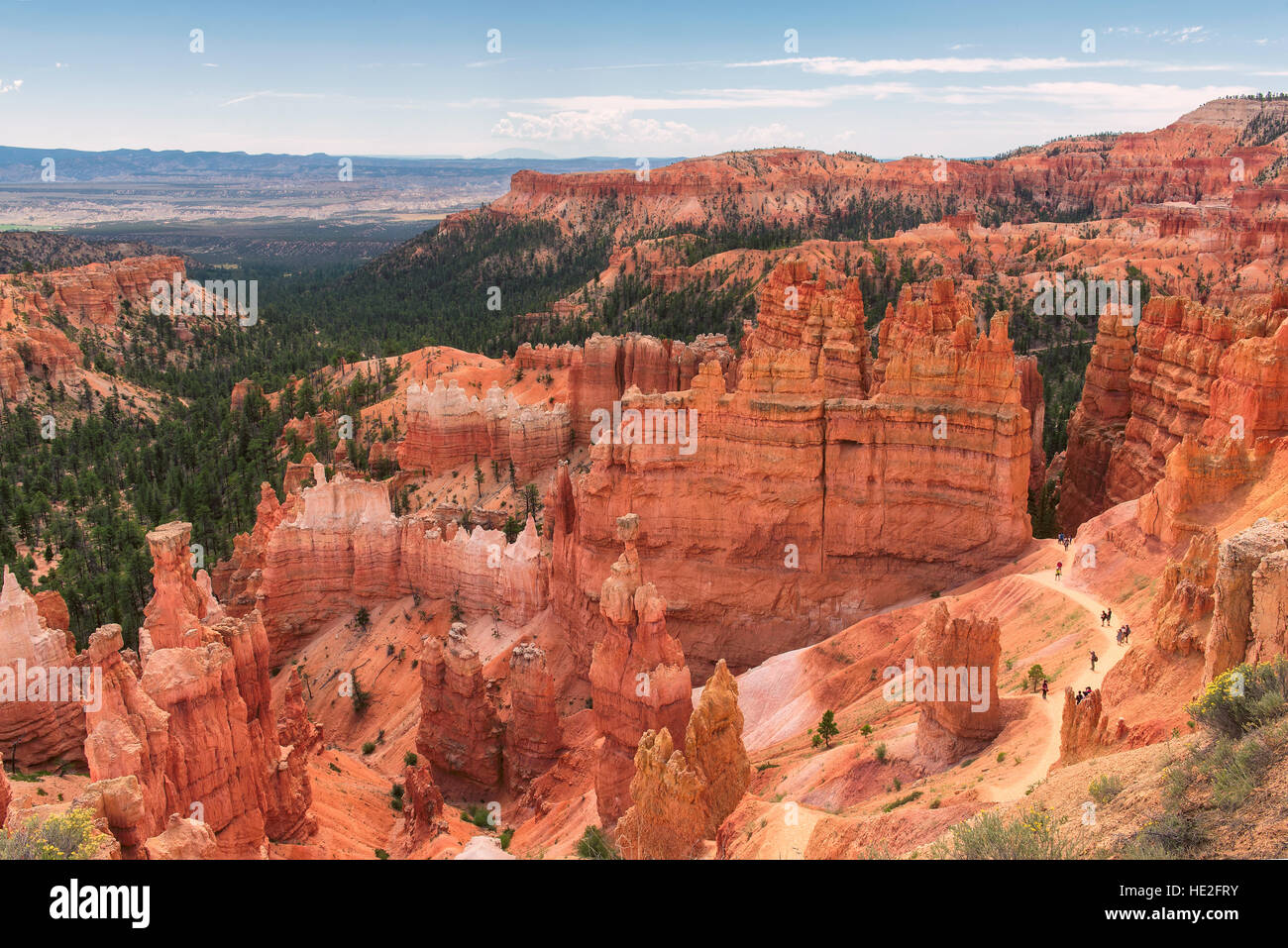 Bryce anfiteatro, parco nazionale di Bryce Canyon, Utah, Stati Uniti d'America Immagini Stock