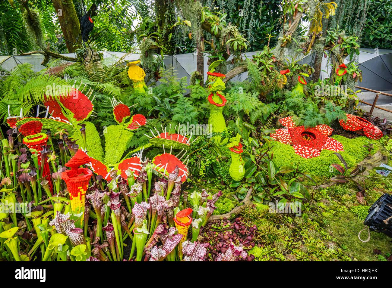 Singapore, giardini dalla baia, Lego piante carnivore al Cloud Forest Green House Immagini Stock