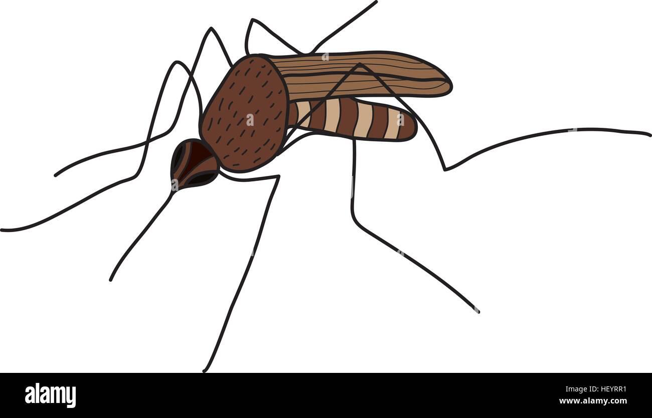 Cartoon Zanzara Colore Isolato Su Sfondo Bianco Illustrazione