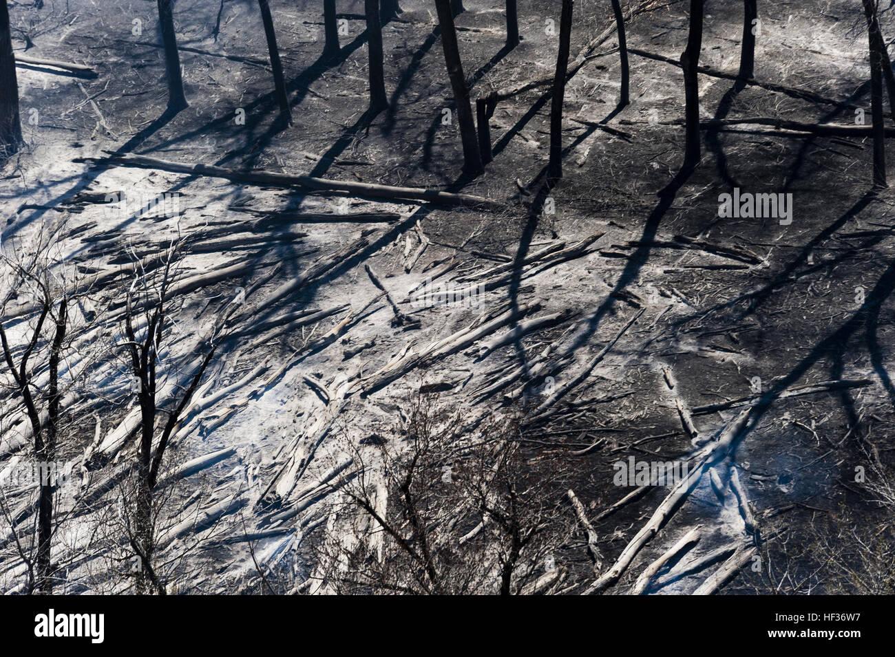 Proprietà Cenere Di Legna il giorno dopo un incendio di grandi dimensioni ha
