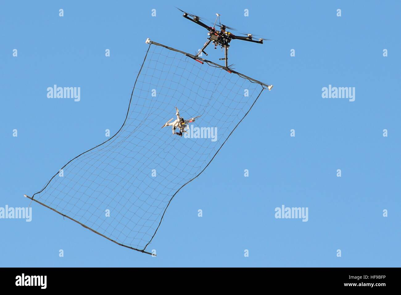 Un Unmanned Aerial system hunter-killer drone acquisisce un fantoccio 3 drone nella sua net metà di volo durante Immagini Stock