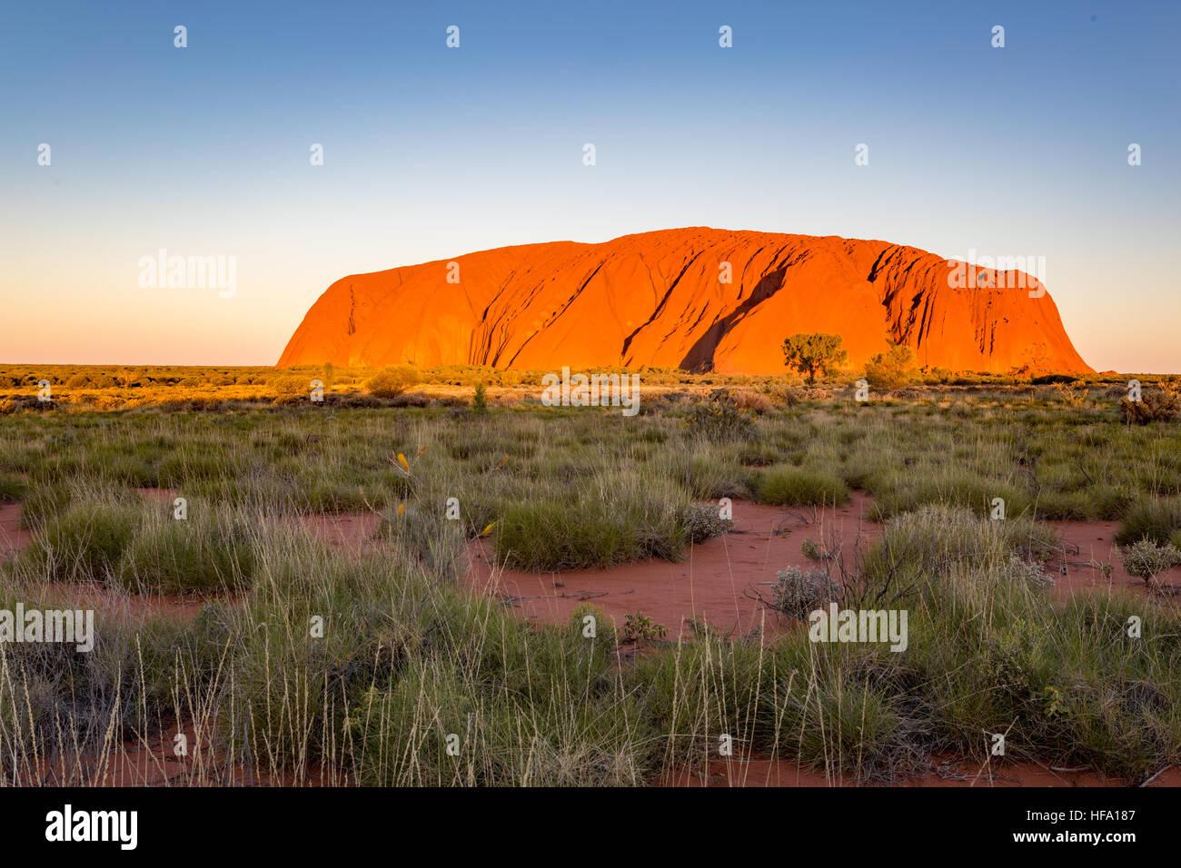 Uluru, Red Centre, Territorio del Nord, l'Australia. Immagini Stock