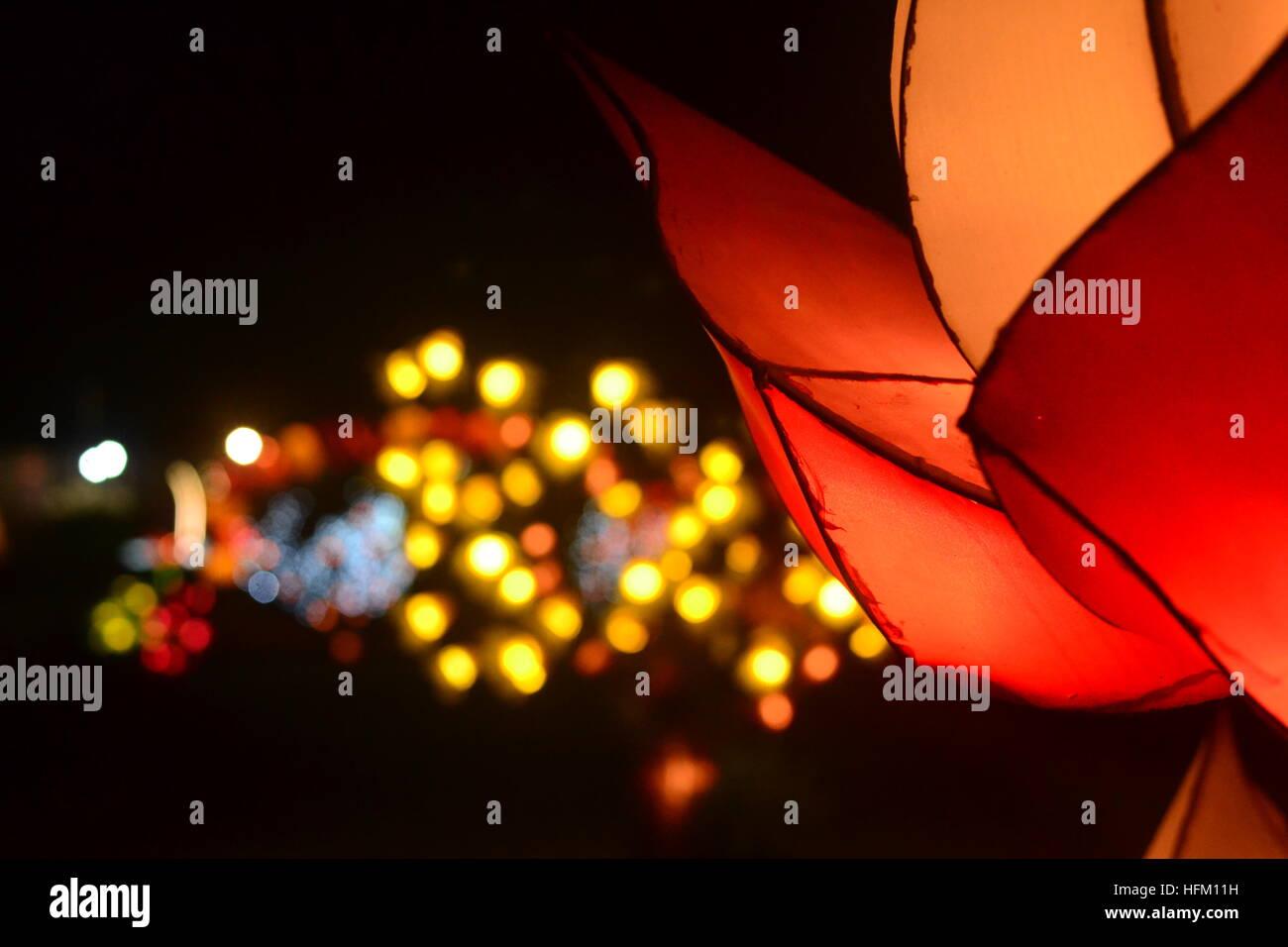 Fiore di luci Immagini Stock