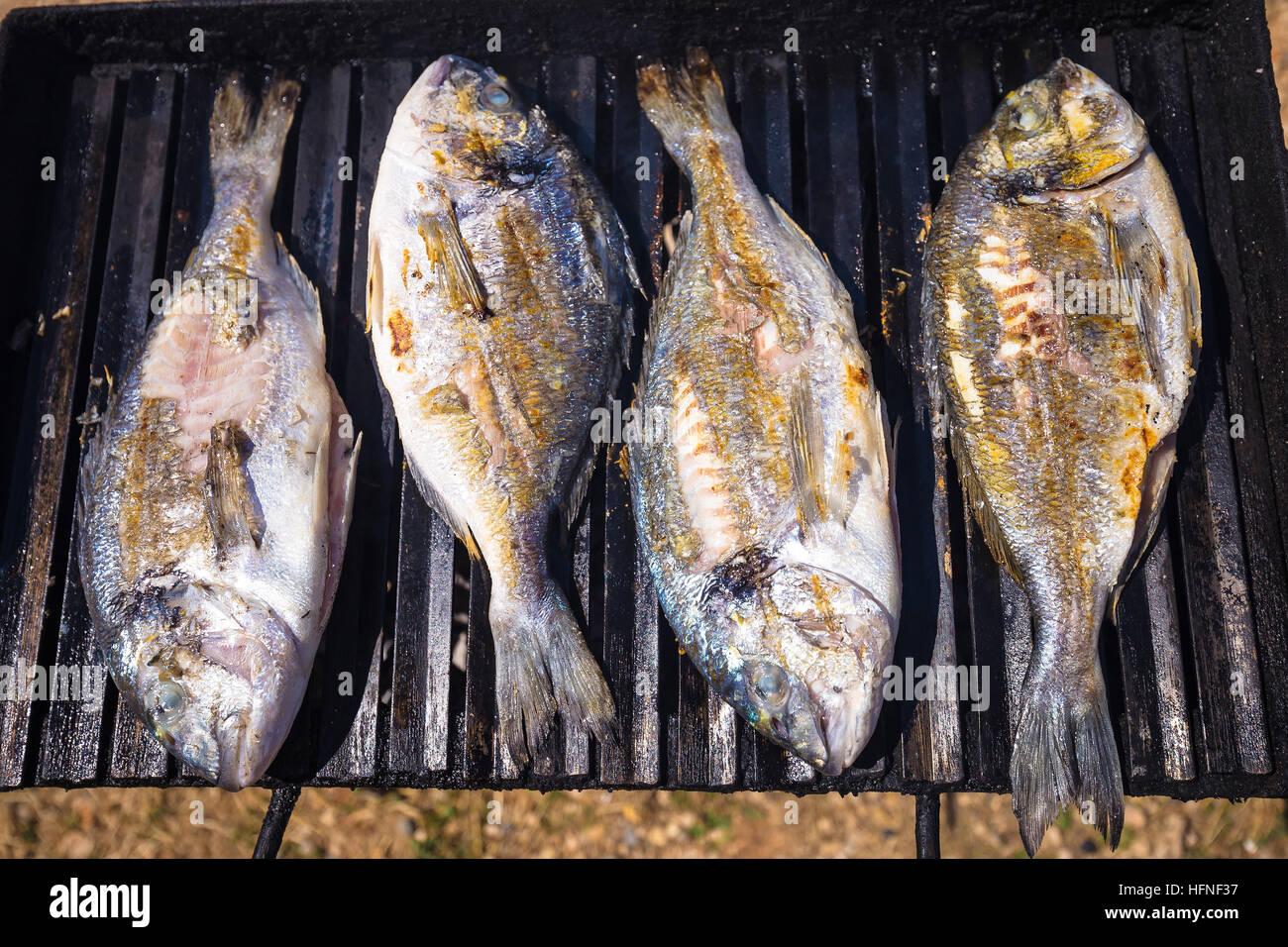 Orate Di Mare Freschi Di Pesce Alla Griglia Visualizza Foto