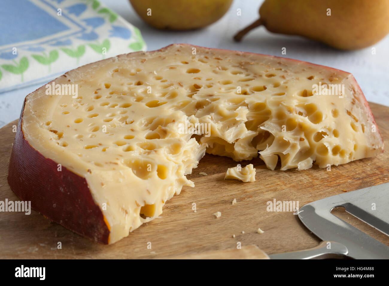 Pezzo di Leiden cumino organici formaggio con un sacco di fori Immagini Stock