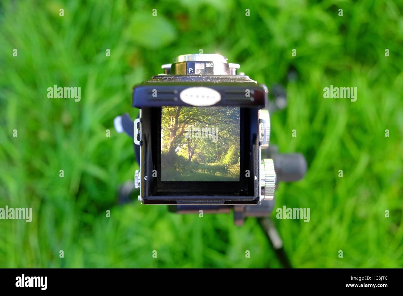 Guardando verso il basso attraverso un vintage doppia lente della fotocamera a livello di cintura mirino al alcuni Immagini Stock
