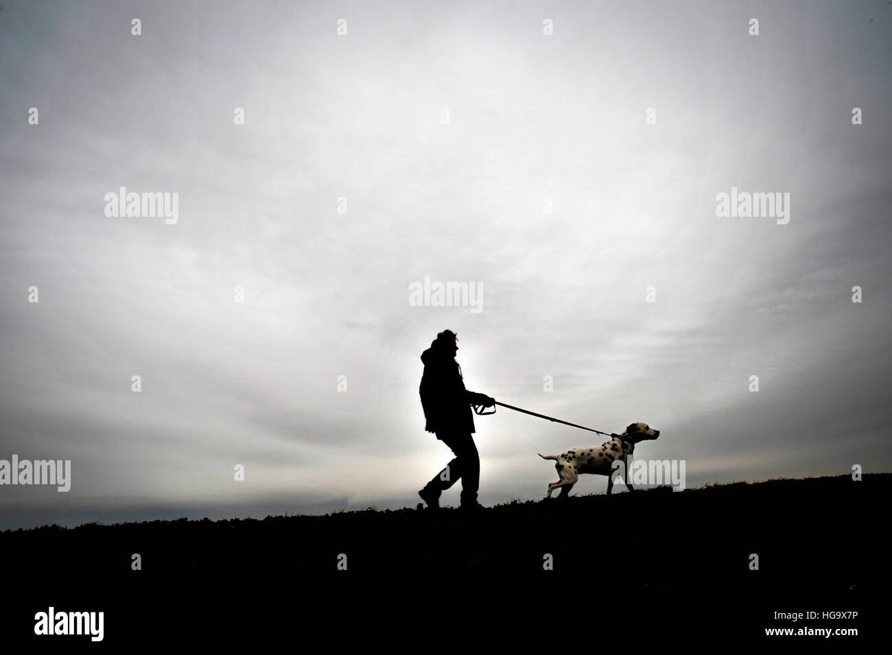 L uomo si prende il suo cane per una passeggiata. Foto Stock