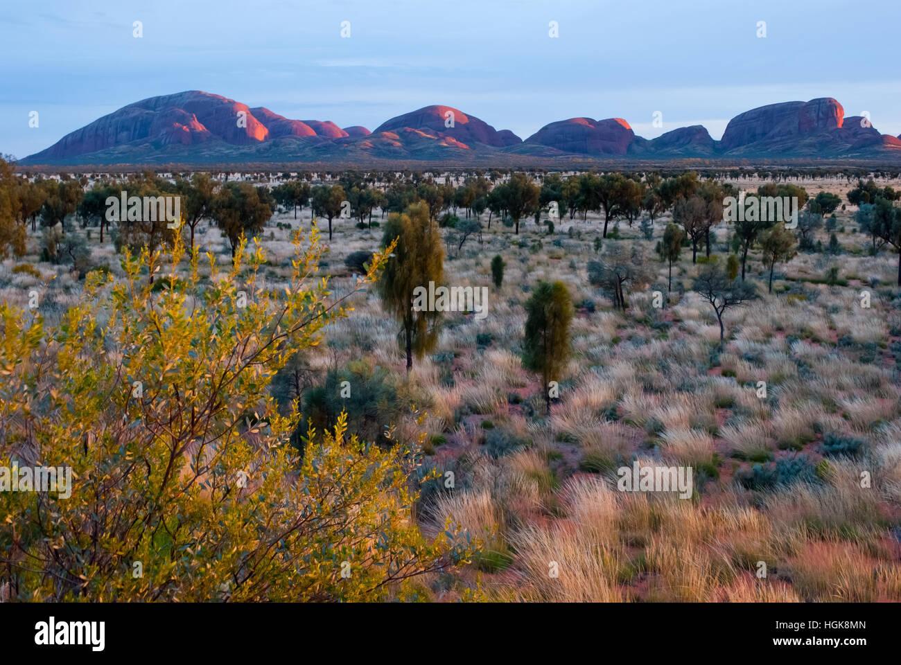 Olgas, Territorio del Nord, l'Australia Foto Stock
