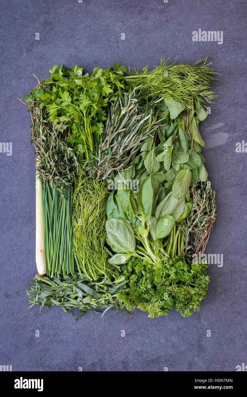 Le erbe fresche su un sfondo di ardesia Immagini Stock
