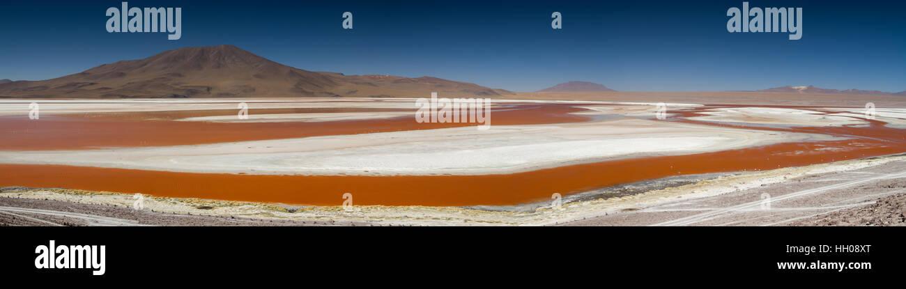 Panorama della Laguna Colorada, Altiplano, Bolivia Immagini Stock