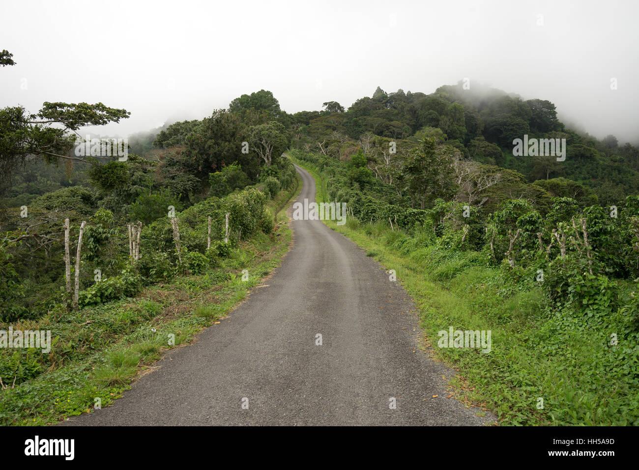 Strada di ghiaia in Panama gli altopiani di Boquete Immagini Stock
