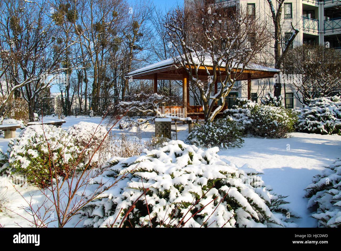 Setagaya Park Vienna , un giardino giapponese in inverno